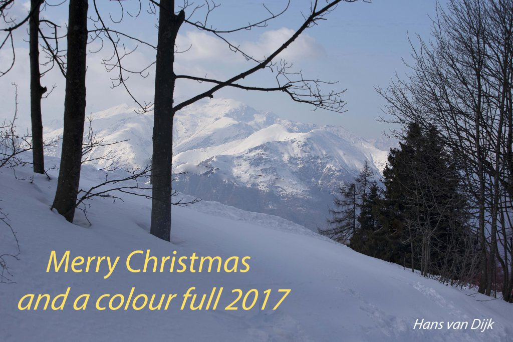 Merry Christmas and a colour full 2017