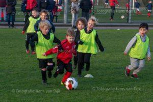 Pancratius zaterdag 8 februari met de mini's, Champions League en jeugd wedstrijden JO13-2 - UNO vv JO13-1, JO9-7 - SDW JO9-2, JO9-9 - Abcoude fc JO9-6, JO8-4 - Atletico Club Amsterdam JO8-1, JO8-8 - ZSGOWMS JO8-2, JO9-2 - Hertha JO9-1, JO9-4 - RKDES JO9-3, JO8-1 - Zeeburgia avv JO8-1, JO8-3 - DSOV JO8-1, JO11-3 - SV Diemen JO10-1, JO11-4 - Aalsmeer JO11-4, JO11-5 - Aalsmeer JO11-2, JO10-1 - Sporting Martinus JO10-3, JO10-2 - VVC fc JO10-2, JO9-5 - Buitenveldert sc. JO9-2, JO8-7 - RODA '23 Rksv JO8-3, JO10-4 - Buitenveldert sc. JO10-3, JO10-7 - vv Zwanenburg JO10-3, JO12-3 - Hoofddorp s.v. JO12-3, JO13-1 - Hollandia JO13-2, MO17-1 - Meern De MO17-2 en JO15-2 - Hertha JO15-1